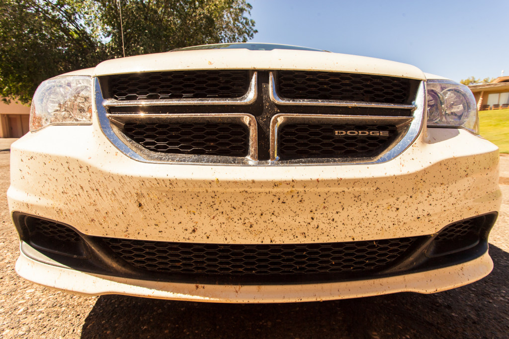 So that's how a car looks after 2000 miles through insects